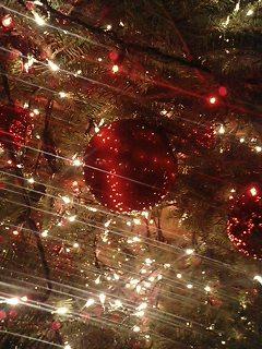 最近クリスマスが長いよね。