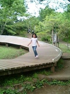 アスレチックス@吾妻山公園