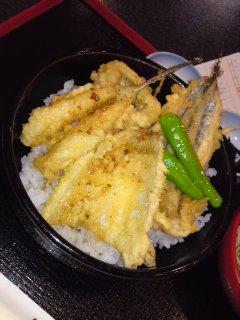 表参道 丸屋 お魚天丼。